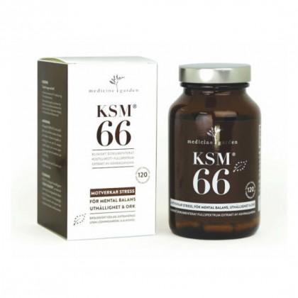 Ashwagandha - Økologisk - 120 Kapsler - KSM66