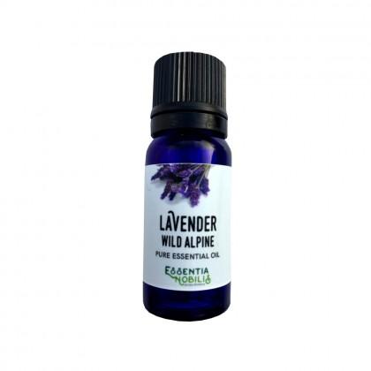 Lavendel (Wild Alpine) - Økologisk Eterisk olje - Essentia Nobilis - 10 ml